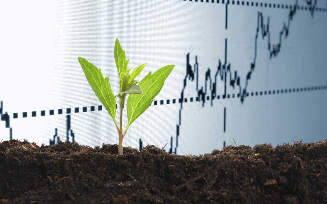 Modernizační fond podpoří obnovitelné zdroje elektřiny